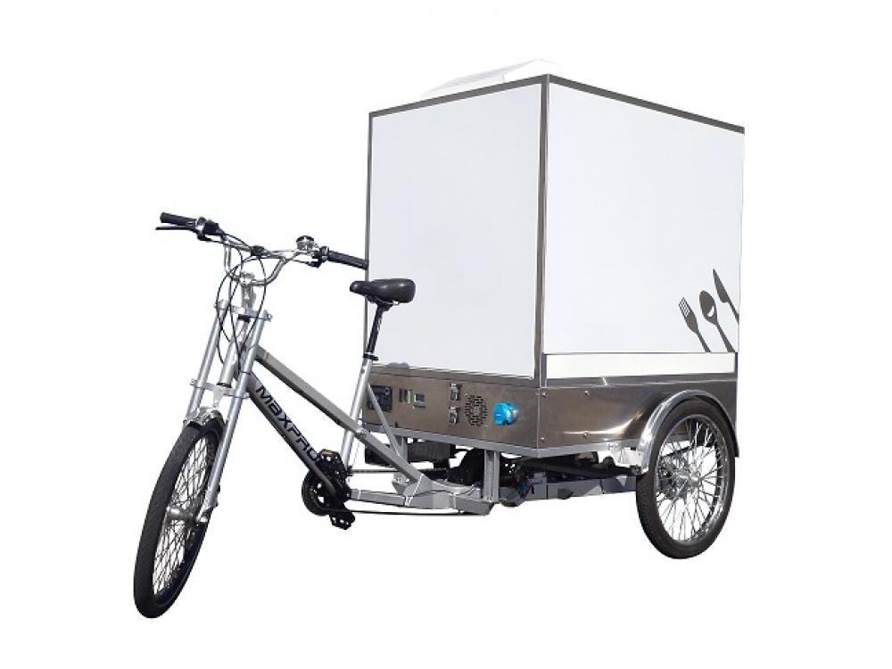 container refrigerant sur tricycle